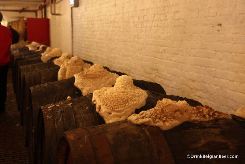 Active fermentation at Timmermans.