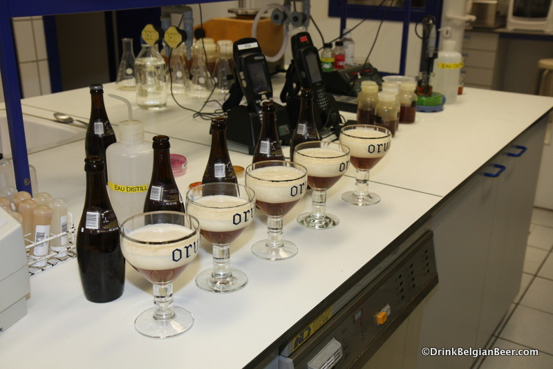 Tasting of different vintages of Orval in the brewery lab, April 2012.