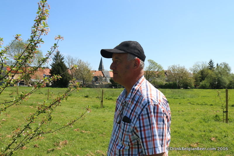 Armand Debelder checking out a Schaarbeekse cheery tree in a field behind the new facility.