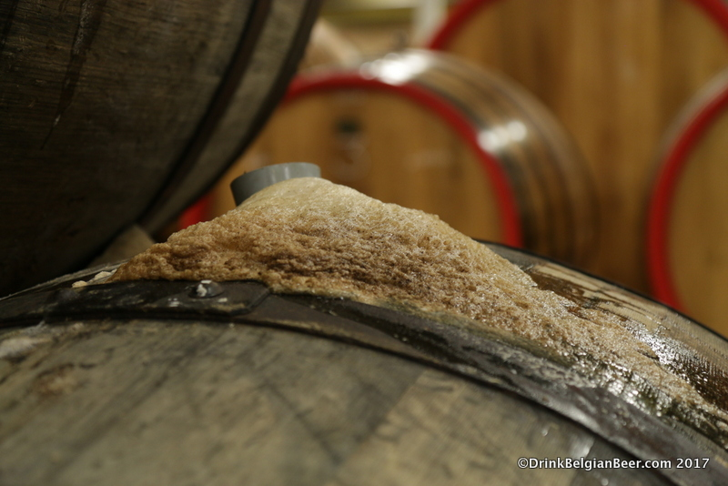 Active fermentation in a 3 Fonteinen barrel.